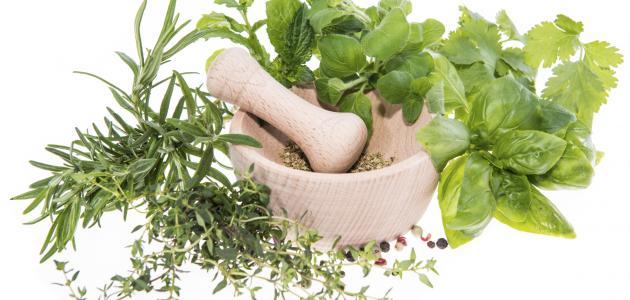 علاج فطريات الفم بالأعشاب