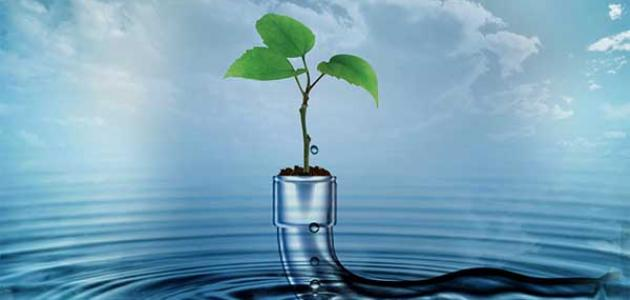 موضوع تعبير عن الماء سر الحياة