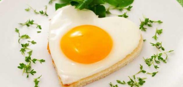 فوائد البيض للحامل %D9%81%D9%88%D8%A7%D8%A6%D8%AF_%D8%A7%D9%84%D8%A8%D9%8A%D8%B6_%D9%84%D9%84%D8%AD%D8%A7%D9%85%D9%84