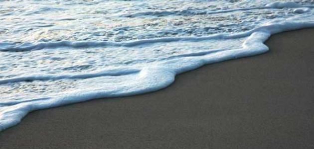 فوائد المد والجزر