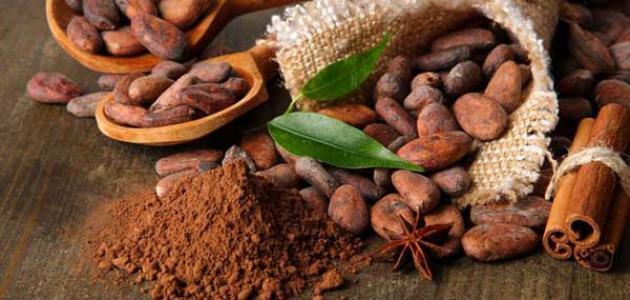 فوائد الكاكاو للحامل