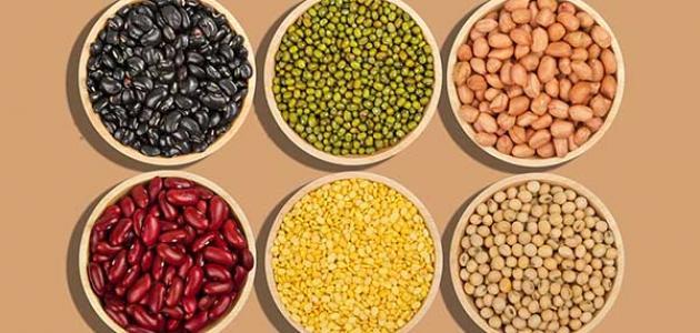 فوائد البروتين