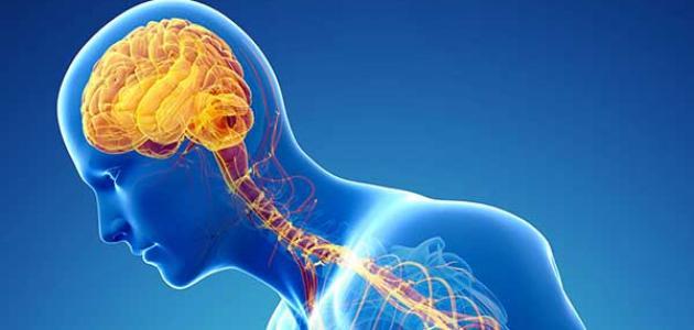 مرض الأعصاب وأسبابه