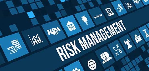 وظيفة إدارة المخاطر المالية