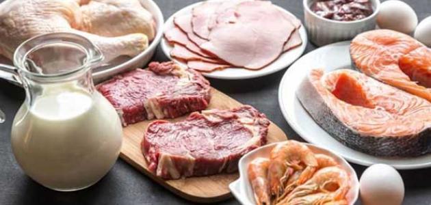 الأطعمة الغنية بفيتامين B12