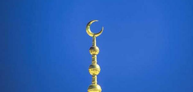 تعريف السياسة في الإسلام