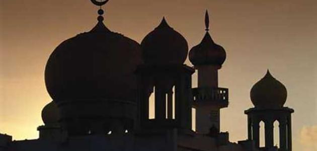 دور أم حبيبة  رضي الله عنها  في الإسلام