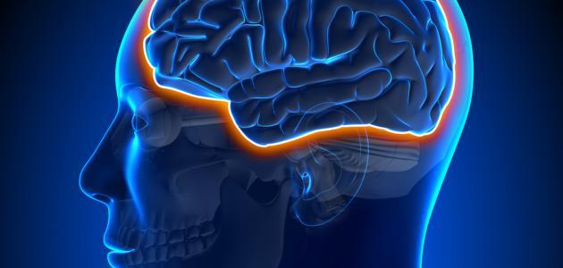 علاج سرطان الدماغ