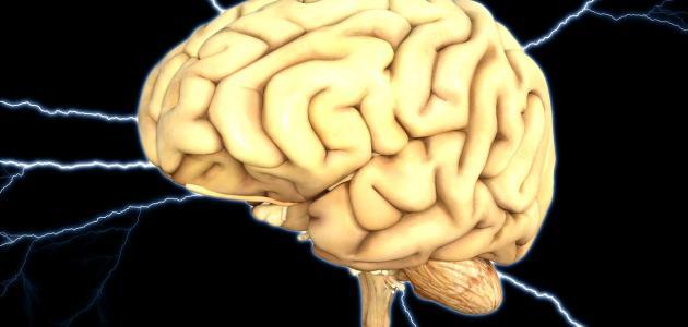 أعراض استسقاء الدماغ عند الكبار