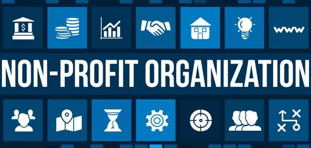 الفرق بين المنظمات الربحية وغير الربحية
