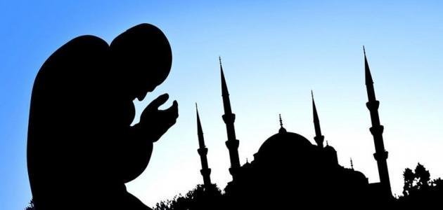حكم قضاء الصلاة الفائتة إذا دخل وقت الأخرى