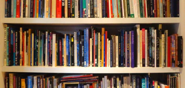 تعريف الأسلوبية في الأدب