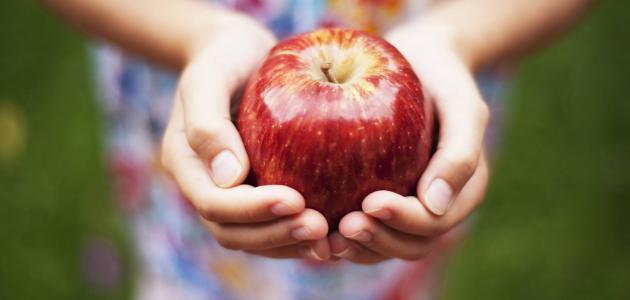 كيفية تقوية الجسم الضعيف بالغذاء