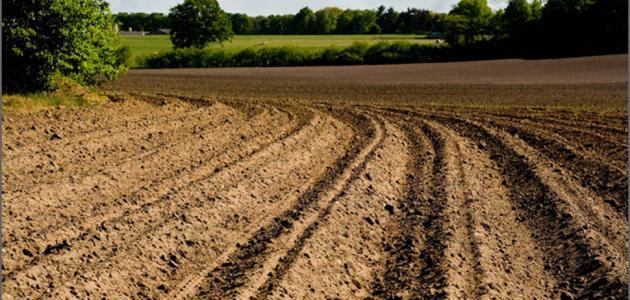 كيفية المحافظة على التربة