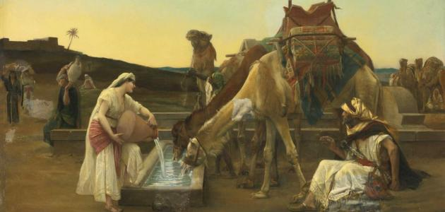 الحياة العقلية للعرب في العصر الجاهلي