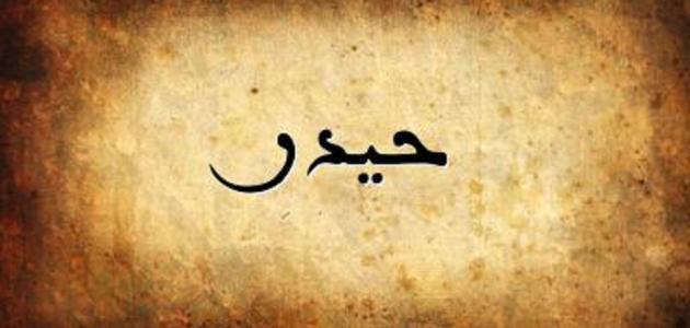 تفسير اسم حيدر في المنام